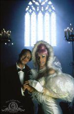 Dobrodružství Priscilly, královny pouště (1994)