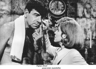 Tajný život americké manželky (1968)