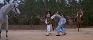 Gigant Shaolinu (1980)