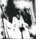 Zplozený (1991)