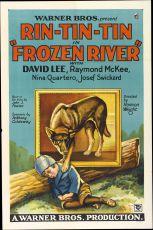 Poklad na ledové řece (1929)