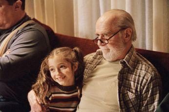 Táta na plný úvazek (2004)