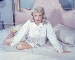 The Fuzzy Pink Nightgown (1957)
