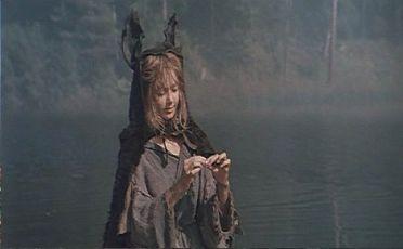 Oslí kůže (1982)