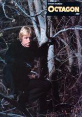 Osmiúhelník (1980)