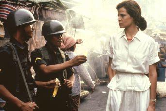 Rok nebezpečného života (1982)
