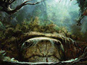 AINBO: Hrdinka pralesa (2020)