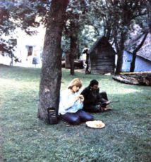 Pásla kone na betóne (1982)