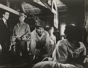 The Young One (1960)