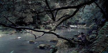 Van Diemenova země (2009)