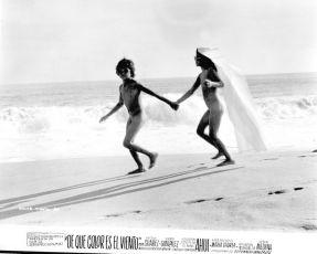 Barevný vítr (1973)