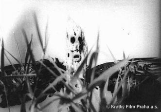 Balada o zeleném dřevu (1983)