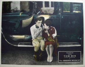 The Arizona Wildcat (1927)