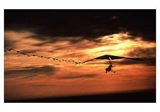 Cesta domů (1996)