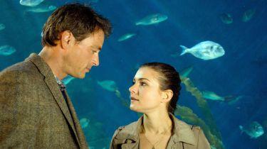 Presumpce lásky (2010) [TV film]