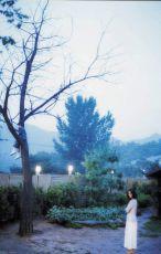 Akát (2003)