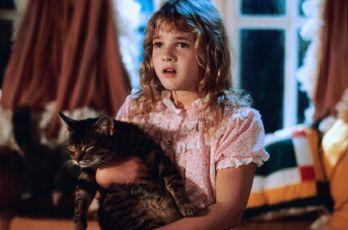 Kočičí oko (1985)