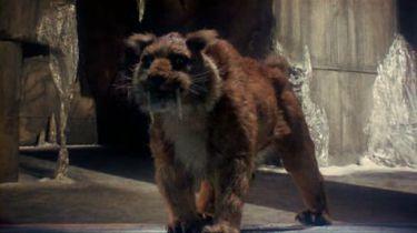 Sindibád a tygří oko (1977)