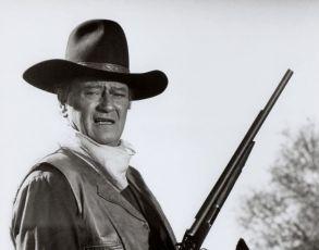 Cahill U.S. Marshal (1973)