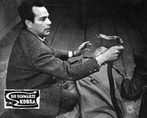 Die schwarze Kobra (1963)