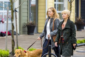 Vztah pro psa (2014) [TV film]