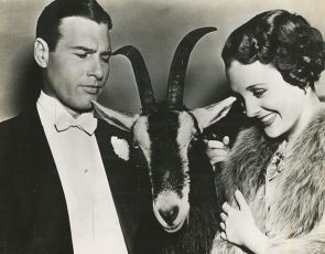 No Time to Marry (1938)