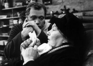 Spravedlnost pro Selvina (1968) [TV film]
