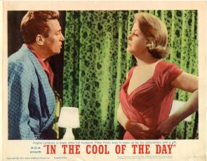In the Cool of the Day (1963)