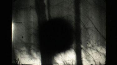 (K) (K) (K) (2012)