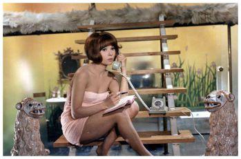 Paša (1968)