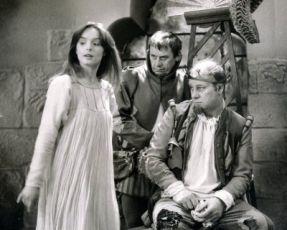 Princezná s jedným krídlom a jednou plutvou (1980) [TV inscenace]