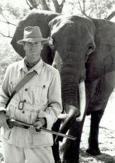 Bílý lovec, černé srdce (1990)