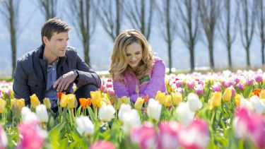 Tulips for Rose (2016)