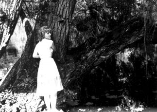 Jarní vody (1968)