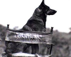 Po stopách Rin Tin Tina (2007) [TV film]