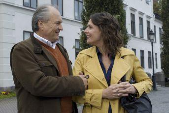 Inga Lindström: Rozhodující léto (2008) [TV film]
