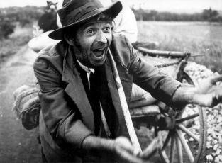 Ľalie poľné (1972)