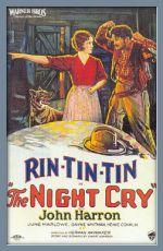 Záhadný výkřik (1926)