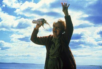 Srpnové velryby (1987)