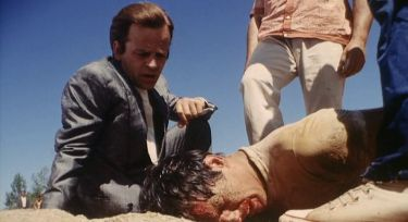 I bastardi (1968)