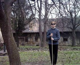 Neúplné zatmění (1982)