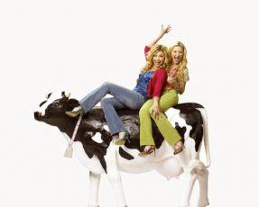Krásky od krav (2006) [TV film]