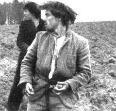 Stín kapradiny (1985)