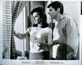 Wild on the Beach (1965)