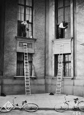 Zlatovlasé opojení (1932)