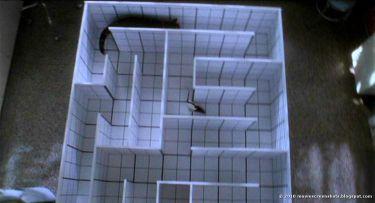 V labyrintu smrti (1996)