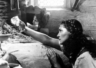Rozina sebranec (1945)