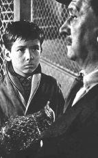 Zlé pondělí (1960)