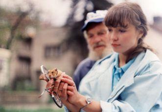 Vlaštovko, leť! (1987) [TV epizoda]