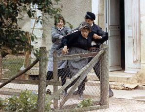 Vdova (1971)